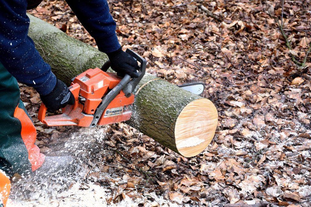 lumberjack-2146509_1280